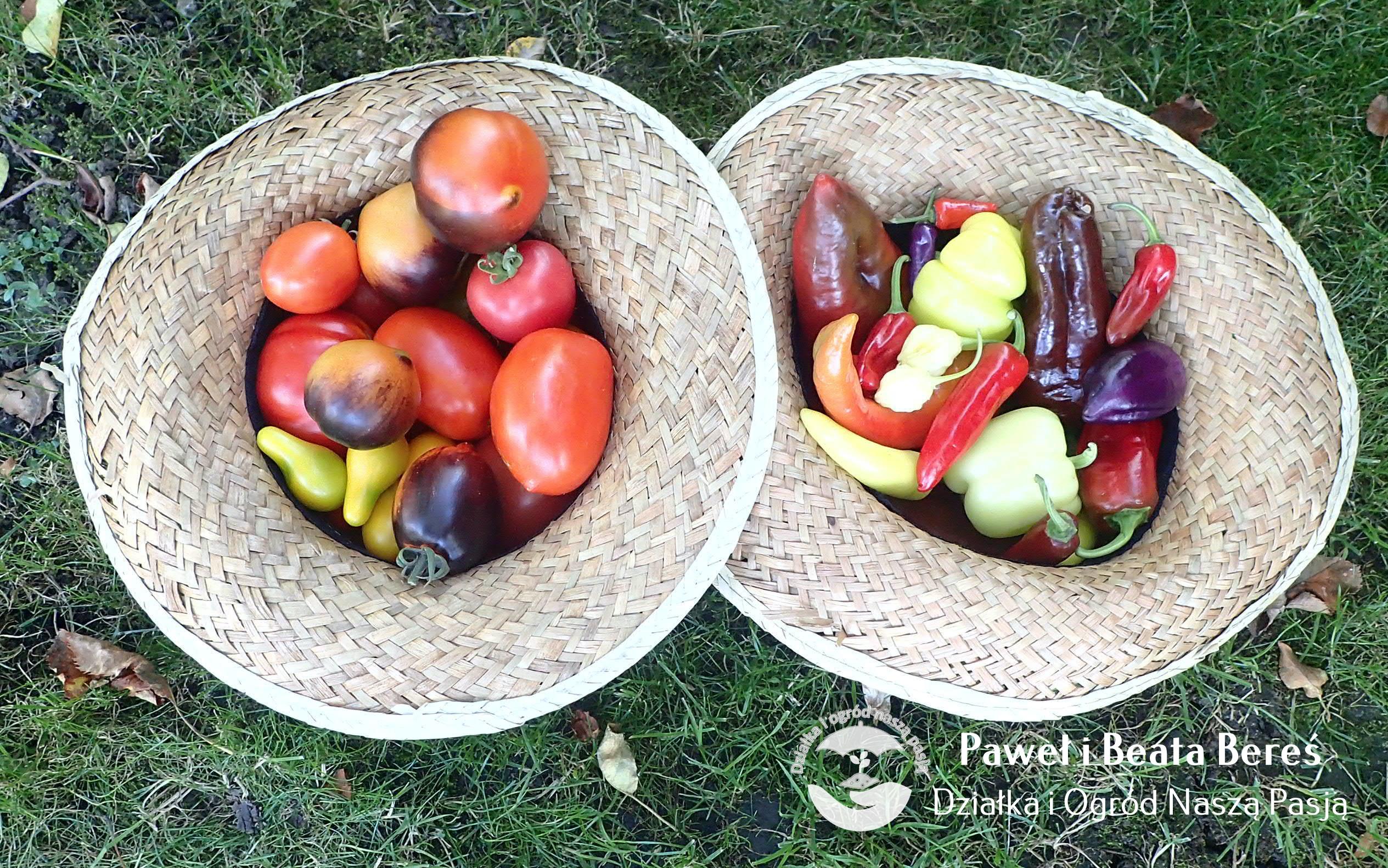 Dlaczego warto uprawiać własne warzywa i owoce?