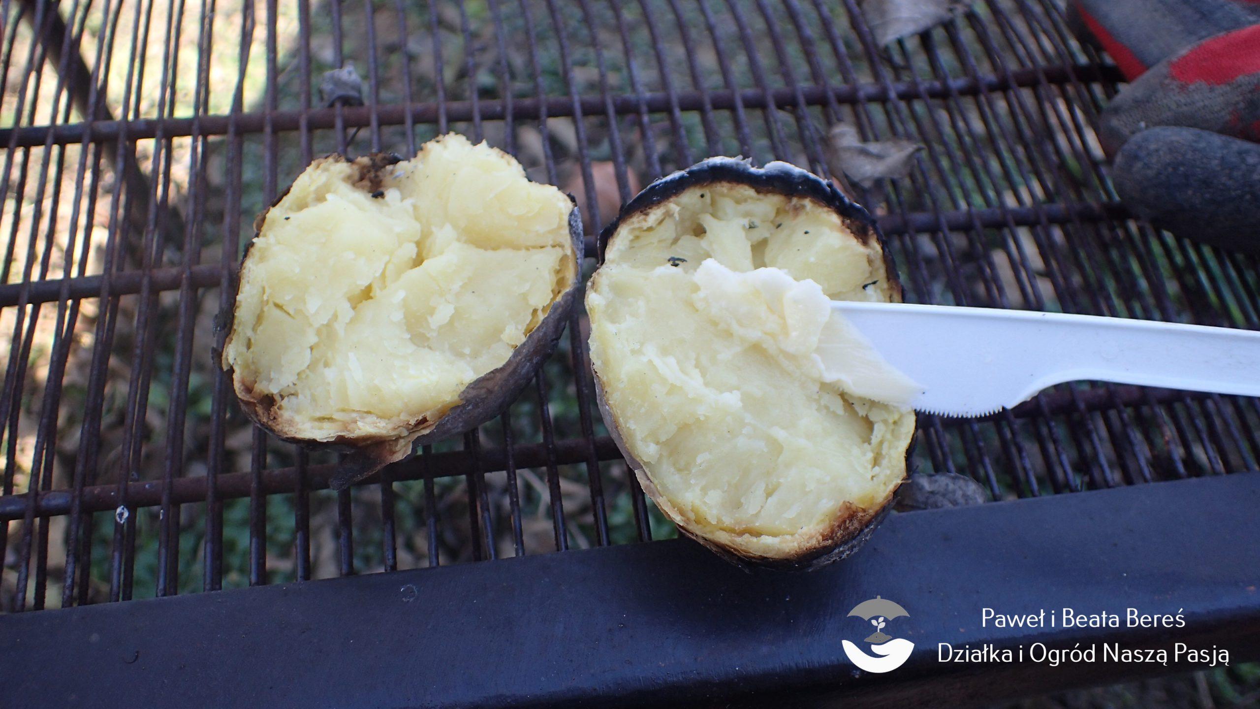 Typy kulinarne ziemniaków warto znać